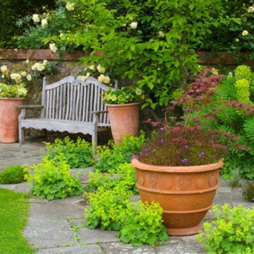 phong thủy đúng luật sẽ giúp tâm hồnbạn thoải mái và đem đếnmay mắn hơn trong cuộc sống. Trong sân vườn có bố trí nhiều cây cối nên tất nhiên chúng đều thuộc HệMộc